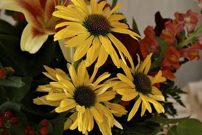 Red Photograph - Yellow Daisies by Richard Gregurich