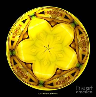 Blossom Photograph - Yellow Lily Kaleidoscope Under Glass by Rose Santuci-Sofranko