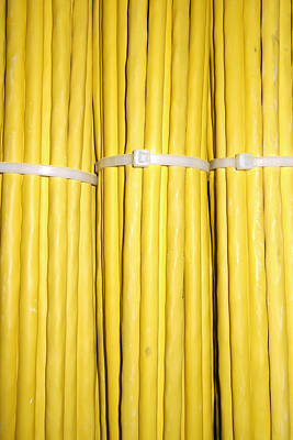 Yellow Network Cables Print by Matthias Hauser