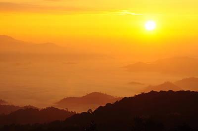 Yellow Sunrise Over Black Forest Mist  Original by Preecha Sirima
