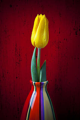 Yellow Tulip In Colorfdul Vase Print by Garry Gay