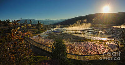 Yellowstone National Park - Minerva Terrace - 05 Print by Gregory Dyer