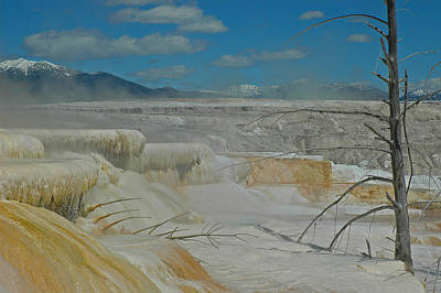 Yellowstone's Canary Springs Print by Bruce Gourley