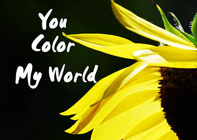Blck Photograph - You Color My World by Judy Hall-Folde
