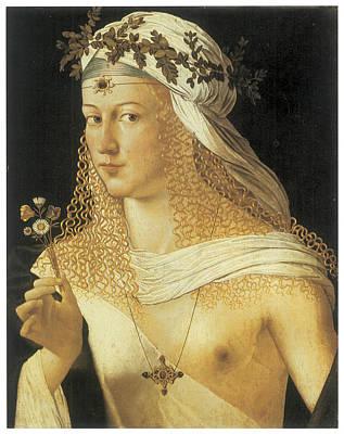 Borgia Painting - Young Woman by Bartolommeo Da Veneto