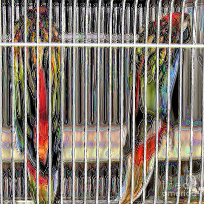 Parakeet Digital Art -  2 Fiery Rosellas by Sharon Broucek