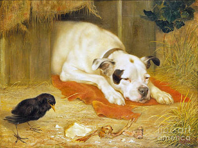 Lazy Dog Painting -  A Bone Of Contention by Herbert William