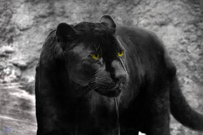Black Leopard Original by Sergey Lukashin