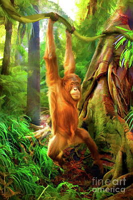 Orangutan Digital Art -  Borneo Baby by Trudi Simmonds