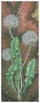 Dandelion Print by Sandra Moore