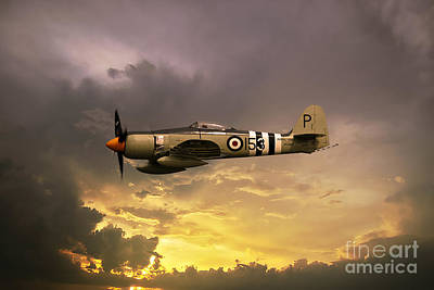 Hawker Sea Fury Print by Stephen Smith