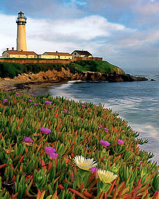 Iceflower Photograph -  Pigeon Point Lighthouse With Spring Wildflowers by George Oze