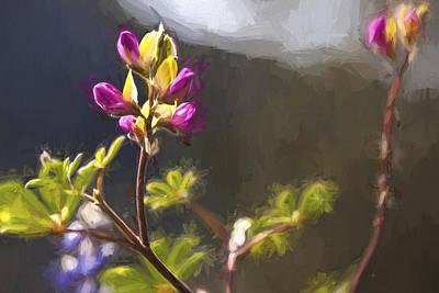 Yosemite Digital Art -  Right Side Up II by Jon Glaser