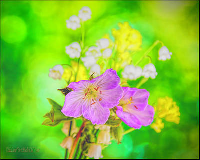 White Photograph -  Spring Bouquet by LeeAnn McLaneGoetz McLaneGoetzStudioLLCcom