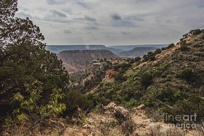 Scenic Photograph - 041215 Pdc - 010e by Ashley M Conger