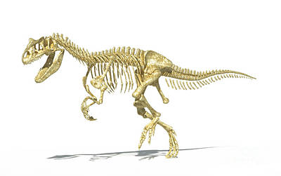 3d Rendering Of An Allosaurus Dinosaur Print by Leonello Calvetti
