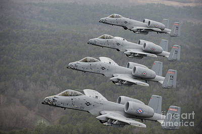 A-10 Thunderbolt IIs Flying Print by Stocktrek Images