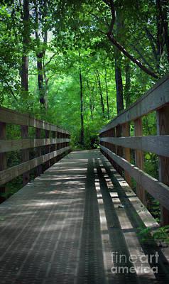 A Bridge To Somewhere Print by Skip Willits