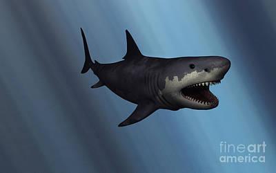 Monster Digital Art - A Megalodon Shark From The Cenozoic Era by Mark Stevenson