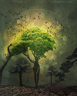 Goddess Digital Art Mixed Media - A Walk In The Woods by Terry Fleckney