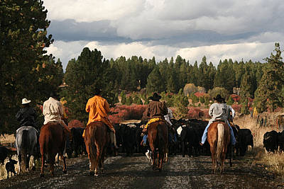 Cattle Drive Digital Art - Almost Home by Lori Kimbel