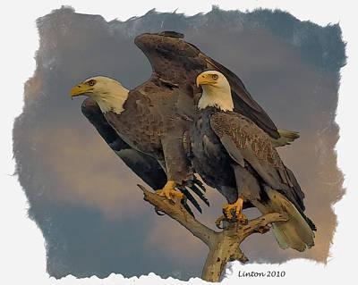 Eagle Digital Art - American Bald Eagle Pair by Larry Linton