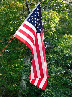 Patriotism Painting - American Flag by Lanjee Chee