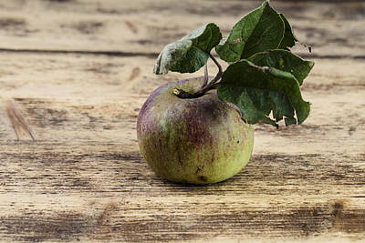 Fresh Photograph - Apple by Nailia Schwarz