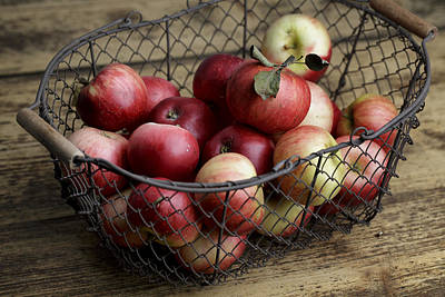 Basket Photograph - Apples by Nailia Schwarz