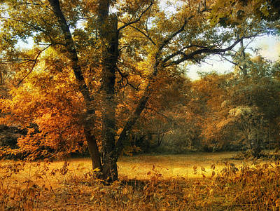 Autumn Arises Print by Jessica Jenney