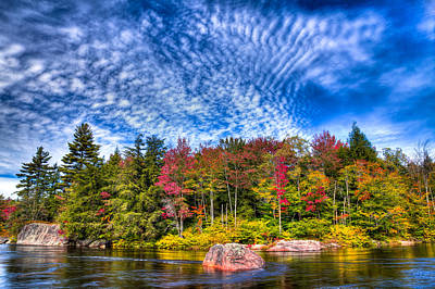 Trees Photograph - Autumn Color On The Moose River by David Patterson