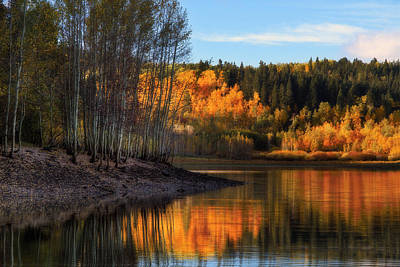 Aspen Tree Fall Colors Photograph - Autumn In The Wasatch Mountains by Utah Images
