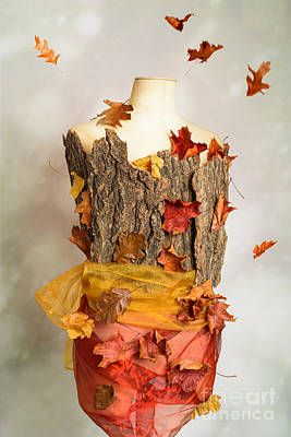 Tree Bark Photograph - Autumn Mannequin by Amanda And Christopher Elwell