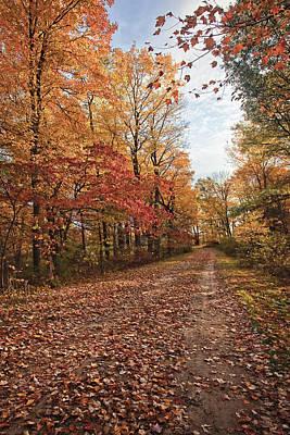 Relax Photograph - Autumn Splendor by Marcia Colelli
