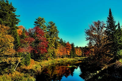Autumn Splendor On The Moose River Print by David Patterson