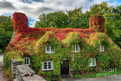 Autumn Tea House Print by Adrian Evans