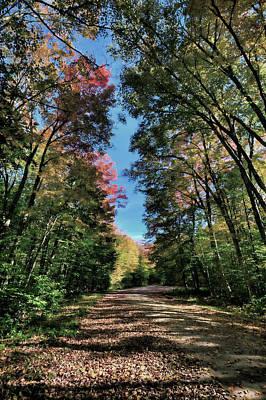 Autumn Landscape Photograph - Autumn Walk by David Patterson