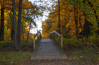 Valley Photograph - Autumn Walk In Valley Forge by Bill Cannon