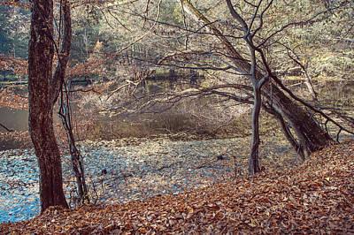 Autumnal Zen Print by Jenny Rainbow