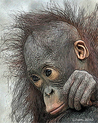 Orangutan Digital Art - Bad Hair Day by Larry Linton