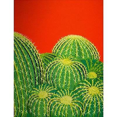 Desert Photograph - Barrel Cactus by Karyn Robinson