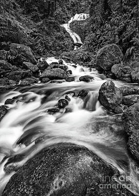 Beautiful Bunch Creek Falls In The Olympic National Park Print by Jamie Pham