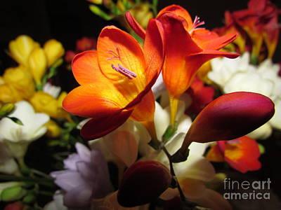 Beautiful Flowers Print by Joyce Woodhouse