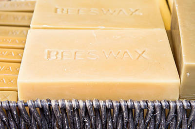 Beeswax  Print by Tom Gowanlock