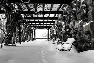 Asheville Photograph - Biltmore's Wisteria Arbor In Snow In Bw by Carol R Montoya