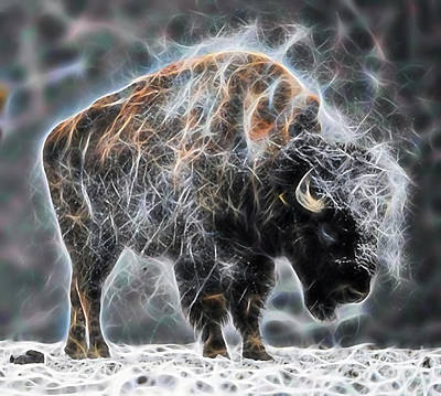 Buffalo Digital Art - Bison Collection by Marvin Blaine