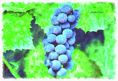 Delicious Painting - Blue Grapes - Watercolor Over Paper by Leonardo Digenio