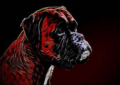 Boxer Digital Art - Boxer Dog by Alexey Bazhan