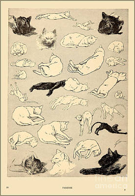 Cat Painting - Cats by Celestial Images
