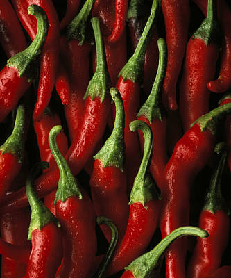 Chili Photograph - Cayenne by Daniel Troy